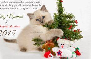 Frases de Navidad para Felicitar a los Clientes en Navidad y Año Nuevo