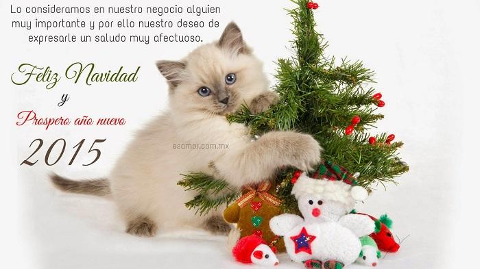 Frases de navidad para felicitar a los clientes en navidad - Frases de navidad para empresas ...