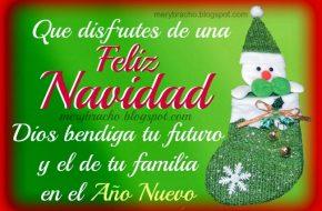Feliz navidad y Año Nuewvo Imagenes Postales Cristianas