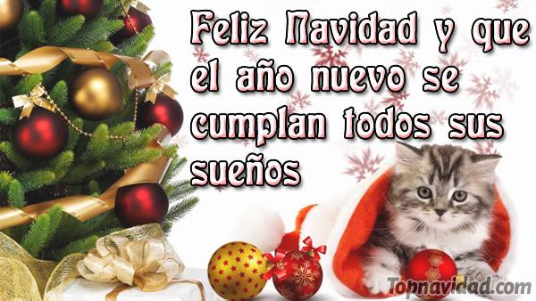 Frases Bonitas De Navidad Para Mi Familia.Frases De Navidad Para Familia Y Amigos Frases De Navidad