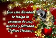 Frases com decoraciones de feliz navidad