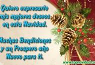 Frases Originales de Feliz Navidad para Compartir