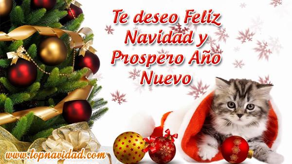 Te deseo feliz navidad y prospero año nuevo